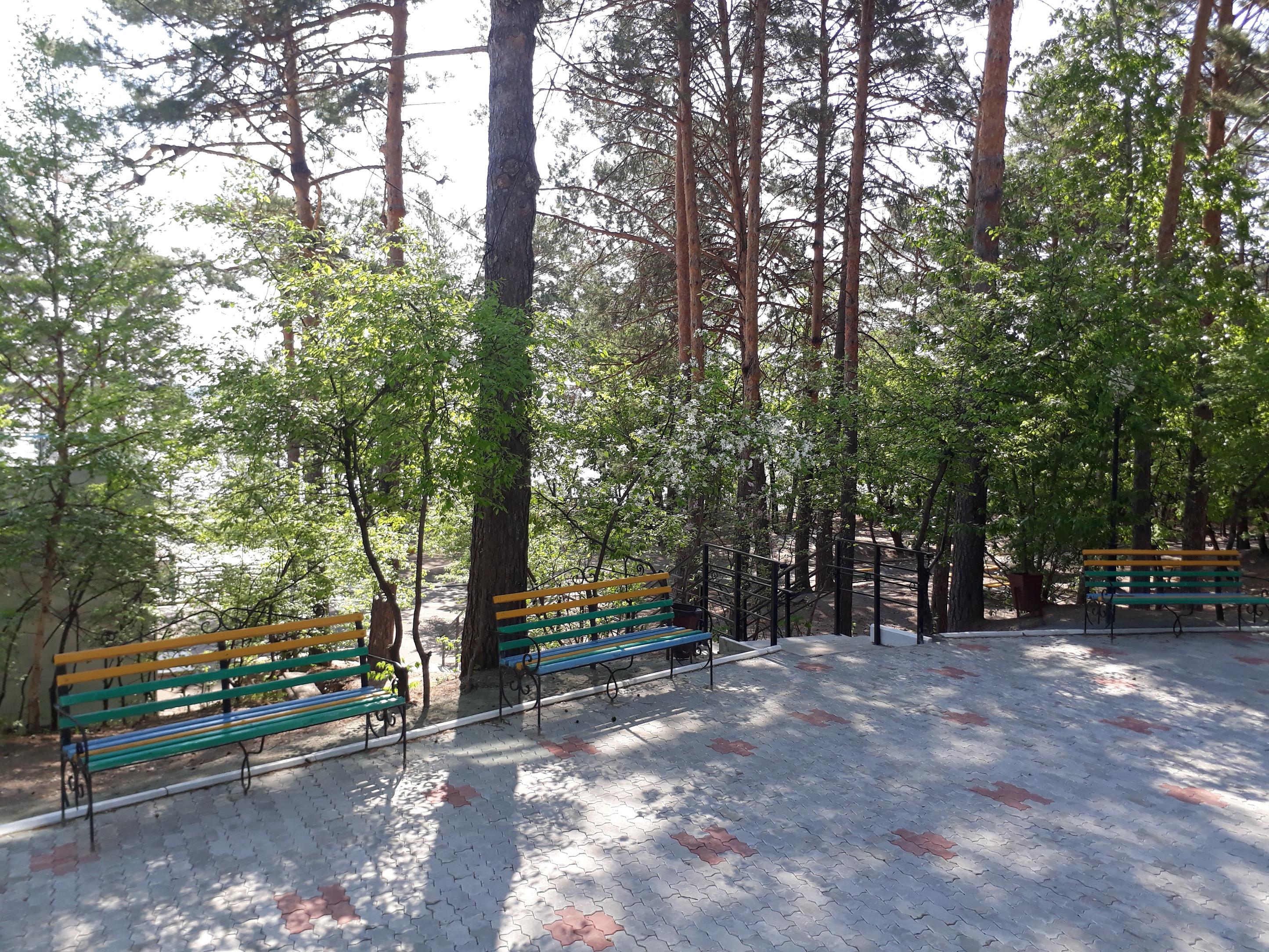 Санаторий василек амурская область фото правильного
